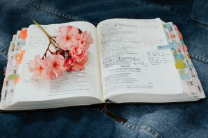 Bible with flowers_1500